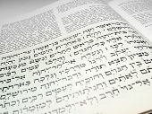 Hebrew  Text