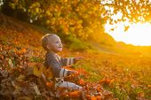 Childhood Memories. Child Autumn Leaves Background. Warm Moments Of Autumn. Toddler Boy Blue Eyes En poster
