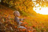 Childhood Memories. Child Autumn Leaves Background. Warm Moments Of Autumn. Toddler Boy Blue Eyes En poster