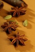 Indian Spices - Cinnamon Sticks, Cardamon, Star Anise poster