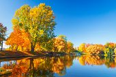 Autumn Park Nature. Colorful Trees And Lake In Park. Fall Scene. Beautiful Clear Autumn Day. Reflect poster