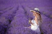 Young Blond Woman In Lavender Field. Happy Carefree Female In A White Dress And Straw Hat Enjoying S poster