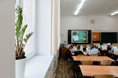 Indoor Plant In A Pot In The Classroom In Focus. Pupils Sit Back To The Camera At The Study Tables I poster