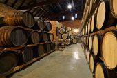 Rows Of Alcoholic Barrels Are Kept In Stock. Distillery. Cognac, Whiskey, Wine, Brandy. Alcohol In B poster
