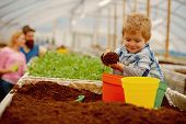 Happy Child. Happy Child Workign With Soil In Garden. Happy Child In Greenhouse. Happy Child With Fa poster