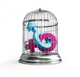 pic of male female  - cage for birds man and women isolated on a white background - JPG