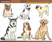Purebred Dogs Cartoon Illustration Set poster