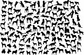 stock photo of animal silhouette  - Lots of silhouettes of different breeds of dogs in action and static - JPG