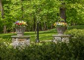 Two Flower Urns In Sunlit Garden