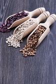 picture of pinto  - Close up photo of a beans in wooden scoop  - JPG