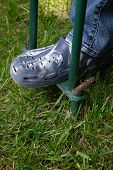 stock photo of aerator  - Woman is aerating lawn by manual aerator in back yard - JPG