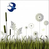 image of bull rushes  - field with stylized flowers bull rushes and bird - JPG