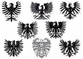foto of eagles  - Heraldic royal medieval eagles for retro heraldry design isolated on white background - JPG