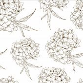 image of hydrangea  - Monochrome Vintage Botanical Seamless Background with Hydrangea - JPG