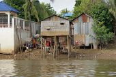 stock photo of shacks  - riparian scenery with shacks at a river in Cambodia - JPG