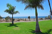 foto of sm  - Beautiful Pacific Palisades Park in downtown Santa Monica - JPG