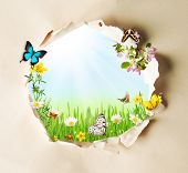 pic of chamomile  - Conceptual spring theme with gappy paper and spring meadow with butterflies and blooming chamomiles - JPG