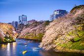 image of kanto  - Tokyo - JPG