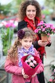 picture of greenhouse  - Little girl with mother holding pot with beauty flowers in the greenhouse  - JPG