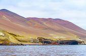 pic of ica  - Islas Ballestas - JPG