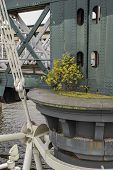 foto of gusset  - Bridge detail closeup with shrub in London - JPG