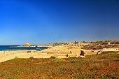 foto of great horse  - Hippodrome  ruins in Caesarea Maritima National Park - JPG