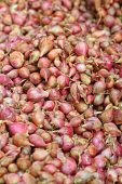 image of red shallot  - Shallot  - JPG