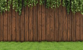 picture of wooden fence  - Garden with old wooden fence grass and leaf plant - JPG