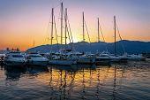 stock photo of marina  - Sailing boats in marina at sunset - JPG