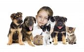 pic of puppy kitten  - child and puppies and kittens on a white background - JPG