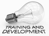 Постер, плакат: Training And Development