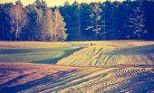 image of plowing  - Vintage photo of plowed field in calm countryside - JPG