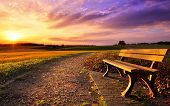 pic of bench  - Colorful sunset scenery in rural landscape with a bench and a path in the foreground gold fields and dramatic vivid sky in the background - JPG
