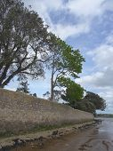 stock photo of backwoods  - Tree Lined Wall And Beach Riverscape photographed at Topsham in Devon - JPG