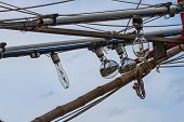 pic of squid  - close up Squid fishing boat light bulb - JPG