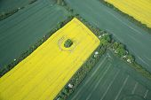 stock photo of rape-field  - Aerial photo of rape fields in Brandenburg county Germany middle of May - JPG