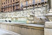 stock photo of piazza  - Fonte Gaia  - JPG