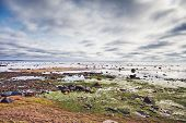 stock photo of ooze  - low tide at sea at dramatic cloudy day - JPG