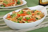 picture of lo mein  - Chicken lo mein with carrots and broccoli - JPG