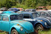 image of beetle car  - vw - JPG