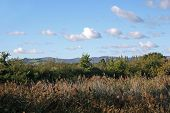 image of hackney  - hills of Dartmoor from Hackney marshes - JPG