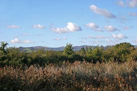 image of hackney  - hills of Dartmoor from Hackney marshes - JPG