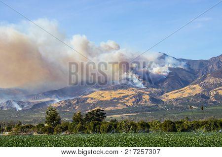 Thomas Fire wildfire