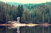 A Beautiful Mountain Lake. The Lake In The Carpathians. Lake Synevyr. poster