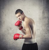stock photo of pugilistic  - Young boxer - JPG