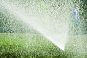image of lawn grass  - Water spraying from a lawn sprinkler with people walking past in the background - JPG