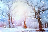 Beautiful Winter landscape scene background with snow covered trees and ice. Christmas landscape. Be poster