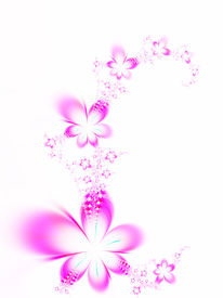pic of floral design  - Bouquet of flowers on a white background - JPG