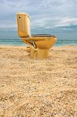 stock photo of scumbag  - Golden lavatory pan at the beach - JPG