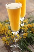 stock photo of mimosa  - Two glasses of mimosa cocktail against bunch of flowers - JPG